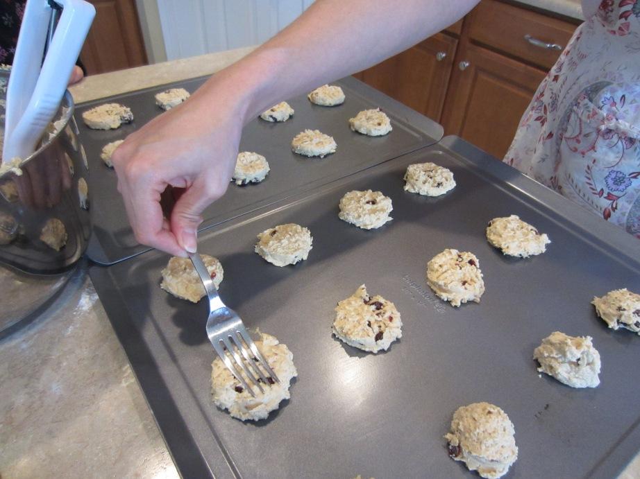 Cranberry Oat Peanut Butter Cookies